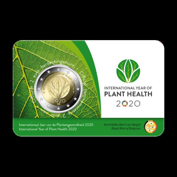 Belgia2020-Plant1